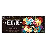 Ichiban Kuji Pokemon EIEVUI•FLOWERS EIEVUI Stuffed toy A Award queue