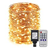 ER CHEN(TM) 165ft Led String Lights,500 Led Starry Lights on 50M Copper Wire String Lights Power Adapter + Remote Control(Warm White)
