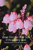 Views from the Other Side of the Looking Glass, Terry Downey, 0595671446