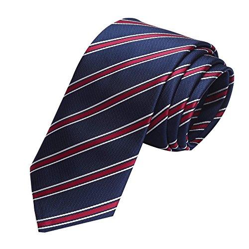 Coofandy Men's Silk Paisley Tie Woven Classic Printed Floral Necktie (Y55)