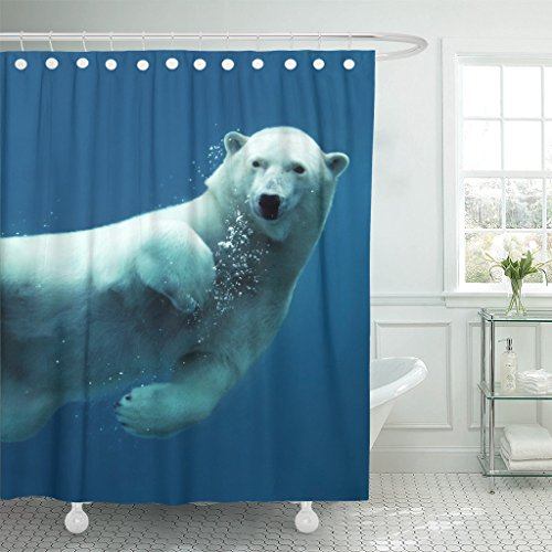 Emvency Shower Curtain Curtainswhite Animal Close Up Of Swimming Polar Bear Underwater Looking At The Camera Blue 66