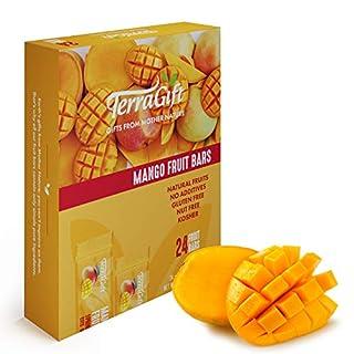 Terra Gift Mango Fruit Bars (24 pack) Yummy 100% Natural Vegan Snack Bars, Gluten Free Energy Bars, Sweet Healthy Snacks