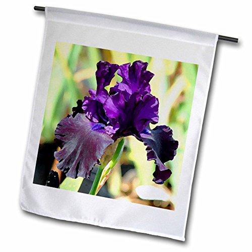 (3dRose fl_4124_1 Purple Iris, Garden Flag, 12 by 18-Inch)