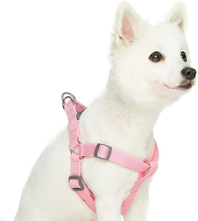Umi Harnais r/églable r/éfl/échissant pour chien taille S largeur de poitrail de 45 /à 53,5 cm Fruits rouges pastel by