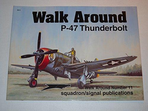 P-47 Thunderbolt - Walk Around No. 11