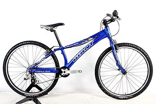 Giant(ジャイアント) TRAIALS TEAM(トライアルチーム) マウンテンバイク 2004年 270サイズ