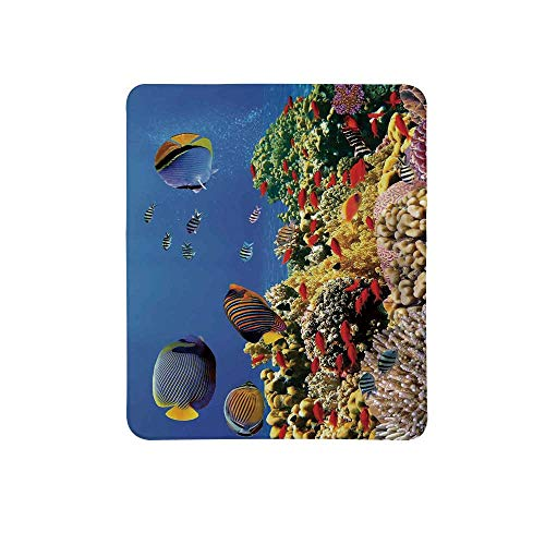 Ocean Non Slip Mouse Pad,Submerged Colorful Coral Colony on Reef Exotic Fishes Tranquil Shallow Sea Picture for Home & Office,11