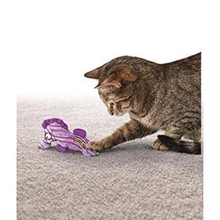 Kong 0035585334226-Gato cuteseas Starfish: Amazon.es: Productos para mascotas