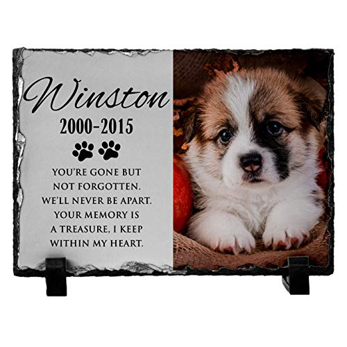 (Personalized Pet Memorial Stone with Photo for Dog Cat or Pets Name Dates - Matte & Glossy Options - UV & Water Proof Indoor Outdoor Garden Grave Marker and Desktop Photo Frame - D3 12