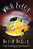 White Rabbit, David Daniel, 0312304293