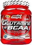 Amix Amix Glutamine + BCAA Powder Aminoácido - 500 gr__8594159534803