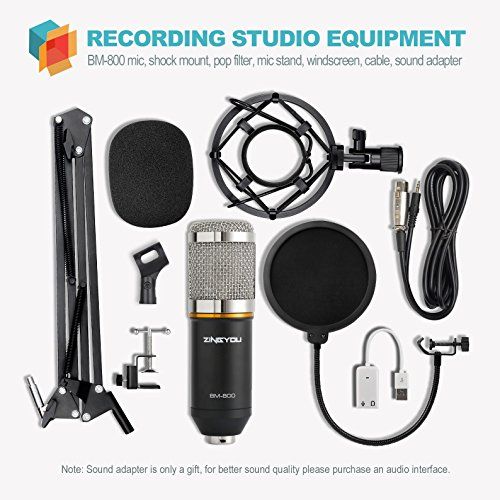 Buy microphones for recording instruments