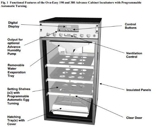 amazon com bgb ova easy 190 advance cabinet incubators range rh amazon com egg incubator circuit diagram pdf egg incubator circuit diagram