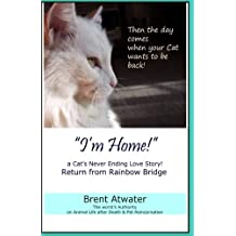 """I'm Home!"" a Cat's Never Ending Love Story: Pets Past Lives, Animal Reincarnation, Animal Communication, Animals Soul Contracts, Animals Afterlife & Animals Spirits"