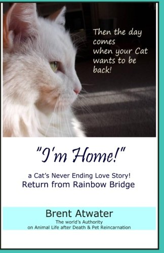 ''I'm Home!'' a Cat's Never Ending Love Story: Pets Past Lives, Animal Reincarnation, Animal Communication, Animals Soul Contracts, Animals Afterlife & Animals Spirits