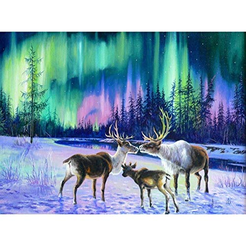 Diamond Painting Adult Art Full Drill 5D Kit Embroidery Numbers Crystal Rhinestone Arts and Crafts for Home Elk 15.7x11.8in 1 Pack by YSQ-SH (Words Their Way Within Word Pattern Activities)