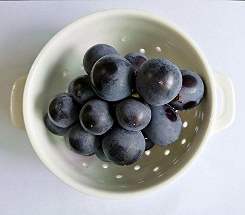 Ceramic Porcelain Colander Kitchen Strainer Bowl for Vegetable Fruit Kitchen Tool, Small,White (Bowl Colander Small)