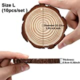 10pcs Hanging Natural Wood Slices Round Unfinished for centerpieces with Holes bark for Christmas Decorations Ornaments Unfinished Wood Woodcrafts DIY Crafts L-10pcs