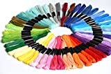 Embroidery Floss Crossstitch Thread – Friendship Bracelets Floss– Crafts Floss– 50 Skeins Embroidery Thread Premium Rainbow Color …