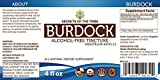 Burdock Tincture Alcohol-Free Liquid Extract, Organic Burdock (Arctium Lappa) Dried Root 4 FL OZ