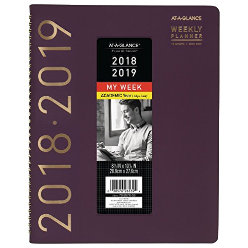 AT-A-GLANCE 2018-2019 Academic Year Weekly & Monthly Planner/Appointment Book, Large, 8-1/2 x 11, Contemporary, Purple (At A-glance Appointment Book)
