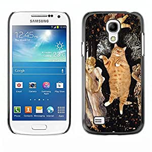 Vortex Accessory Carcasa Protectora Para SAMSUNG GALAXY S4 MINI i9190 (MINI VERSION) - Orange Fat British Shorthair House Cat -