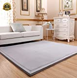 Kids Carpet Playmat Rug Thickness:3CM Coral Velvet Living Room Carpet, HIGOGOGO 51 by 75 inch Children Play Rug Ultra Soft Bathroom Rugs Area Rugs