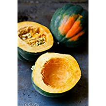 Acorn Squash-40 Seeds - Table King -Non GMO- Organic -Open Pollinated