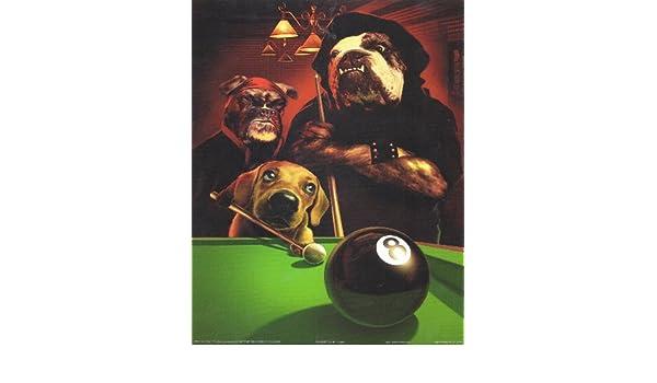 8 x 10 Póster con diseño de perritos jugando de billar bola ocho de Gerard Taylor **Vintage**: Amazon.es: Hogar