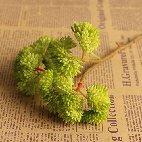 AMAZZANG-Simulation Fake Succulent Plant Stem Real Touch Fruit Foliage Flower Decor New (green)