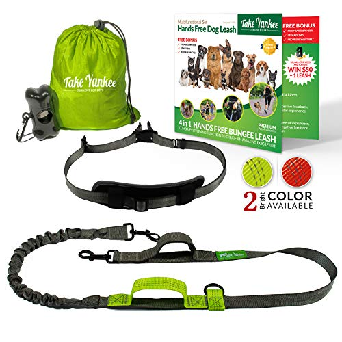 Bestselling Dog Hands Free Leashes