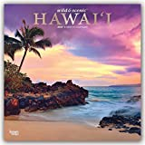 Wild & Scenic Hawaii 2020 Calendar: Foil Stamped Cover