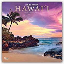 2020 Hawaii Calendar Wild & Scenic Hawaii 2020 Calendar: Foil Stamped Cover: Browntrout
