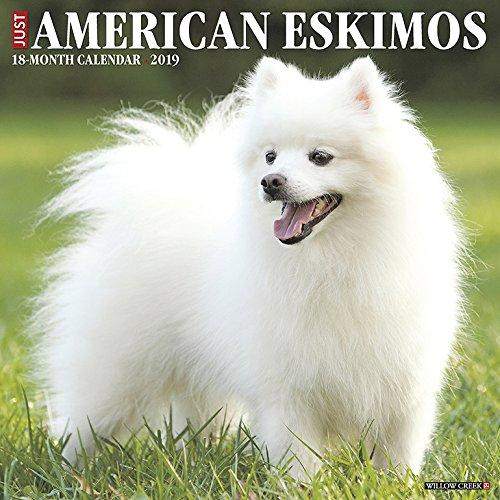 American Eskimos 2019 Wall Calendar (Dog Breed Calendar)