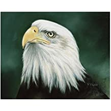 """Giclee print """"Eagle Eye"""" A painting of a bald eagle portrait, signed limited edition print."""