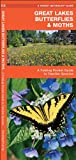 Great Lakes Butterflies and Moths, James Kavanagh, 1583553703