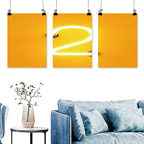 (SCOCICI1588 3-Piece Modern neon Light Digit Alphabet Character Two Font neon Tube Letter to Hang for Living Room No Frame 16 INCH X 40 INCH X)