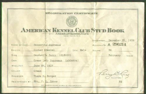 AKC Cocker Spaniel Stud Registration Certificate 1938 at