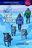 Ice Wreck, Lucille Recht Penner, 0307264084