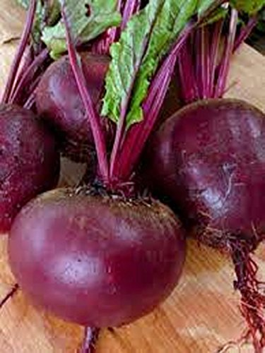 Beets, Ruby Queen , Organic, NON-GMO, 25 per package,Ruby Queen beet's round red roots have a smooth buttery texture that pleases the tongue.