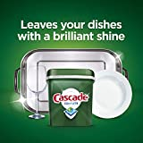 Cascade Complete ActionPacs Dishwasher