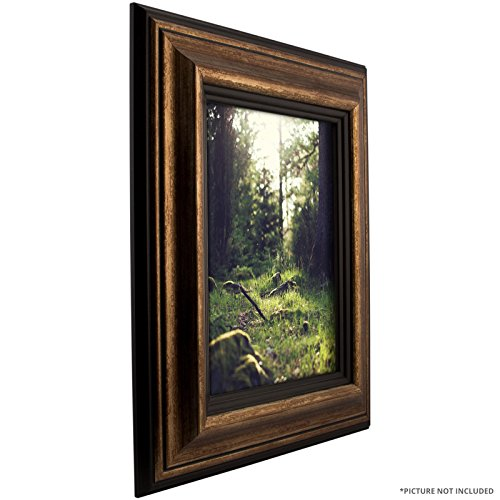Craig Frames Sonora, Aged Copper and Black Picture Frame, 10 by 13-Inch (Aged Gold Wall)