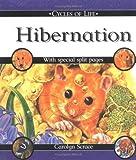 Hibernation, Diana Theophylactou, 0531148424