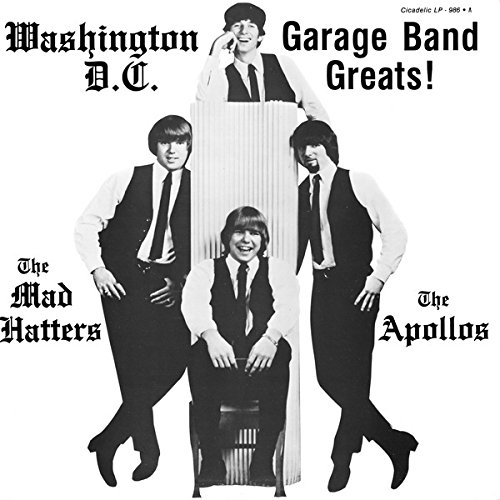 washington, d.c. garage band greats! LP