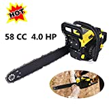 Tomasar ChainSaw 20' 58CC 4.0 HP Gas Powered Chain Saw 2 Stroke...