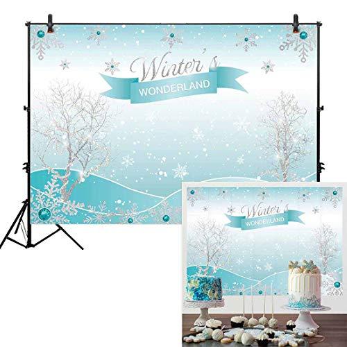 Winter Wonderland Sweet 16 Themes (Allenjoy 7x5ft Winter Wonderland Theme Backdrop for Girl Sweet 16 Sixteen 1st Birthday Party Banner Festival Ice Blue Background Children Family Photo)