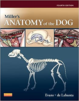 Miller's Anatomy of the Dog: Evans PhD, Howard E., de Lahunta ...