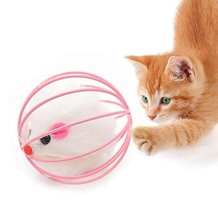 Pawaca Animal diseño chirriador Gato Cachorro Mascota Juguete Masticar Gatos, 1 Juguete para Gato/Accesorios para Jugar al Gato, Divertido Juguete para Gato ...