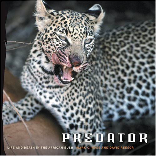 Predator: Life and Death in the African Bush by Brand: Harry N. Abrams