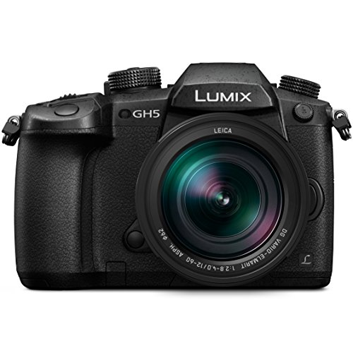 Panasonic LUMIX GH5 4K Mirrorless Camera with Lecia Vario-Elmarit 12-60mm...